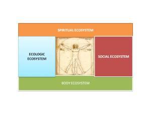 Prosumerzen 4 ecosystems